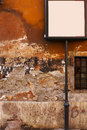 Background of old grunge vibrant stucco wall in rome Royalty Free Stock Photography
