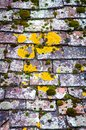 Background of old roof covered with tiles Royalty Free Stock Image