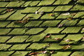Background of old roof tiles Royalty Free Stock Photos