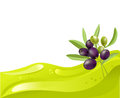 Background of olive oil and olive branch vector illustration Stock Photos
