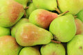 Background of pears on pile picture is good for Royalty Free Stock Photo