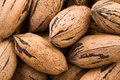 Background of pecan nuts Stock Images