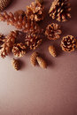 Background With Pinecones