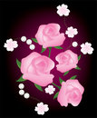 Background with pink roses Stock Photo