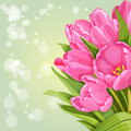 Background of pink tulips green Stock Photos