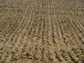 Background of a ploughed (plowed) field Royalty Free Stock Photo