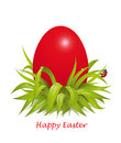 Background for red easter eggs in the grass with ladybug vector illustration egg Stock Photos