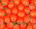 Background of ripe red tomatos Royalty Free Stock Photo
