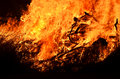 Background roaring fire flames of bushfire blaze at night Royalty Free Stock Photo