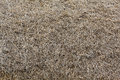 Background roof of straw Royalty Free Stock Photo