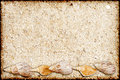 Background from sand and shells in a grunge style Royalty Free Stock Photo