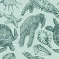 Background with a sea turtles Royalty Free Stock Images