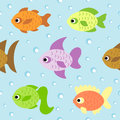 Background seamless with fish card Royalty Free Stock Photography
