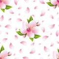 Background seamless pattern with sakura blossom and petals