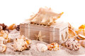 Background with seashells and treasure chest copy space Stock Photography