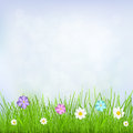 Background with sky grass and flowers natural blue green multicolored Stock Photo