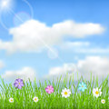 Background with sky sun clouds grass and flowers natural blue green multicolored Stock Photo