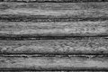 Background of some wooden logs closeup black and white Royalty Free Stock Photo