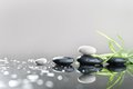 Background of a spa with stones and green leaves Royalty Free Stock Photos