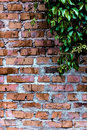 Texture and background (brick wall)