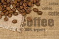 Background with texture of burlap and coffee beans Royalty Free Stock Photo