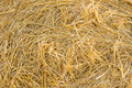 Background texture of fresh dried hay Royalty Free Stock Photo