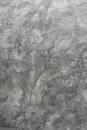 Background texture of a gray wall micro cement Royalty Free Stock Photography