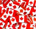Background texture - a jumble of Canadian maple leaf flag toothpicks