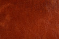 Background with texture of leather Royalty Free Stock Photography