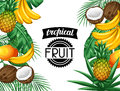 Background with tropical fruits and leaves. Design for advertising booklets, labels, packaging, menu Royalty Free Stock Photo