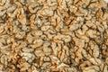 background of walnut kernels.