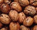 Background of wet walnuts Royalty Free Stock Photo