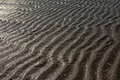 Background of wet wavy sand with sun reflections Royalty Free Stock Photo