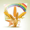 Background with wheat ears Stock Photo