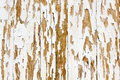 Background of white, peeling paint on an old wall Royalty Free Stock Photo