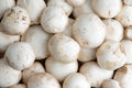 Background of whole fresh white button mushrooms Royalty Free Stock Photo