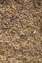 Background of wood shavings.Biomass fuels. Royalty Free Stock Images