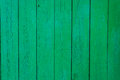 The background is a wooden fence painted with green paint Royalty Free Stock Photo