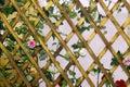 Background wooden lattice for plants lozenge, wooden grate diamond-shaped quadrangle Royalty Free Stock Photo