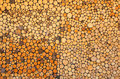 Background with woodpile Royalty Free Stock Photo
