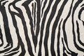 Background with zebra texture abstract Royalty Free Stock Photography