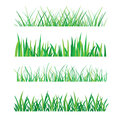 Backgrounds of Green Grass Isolated On White Vector Illustration Royalty Free Stock Photo