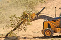 Backhoe brush loading up following a cleanup of trees from a new commercial construction development Stock Image