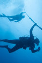 Backlit divers diving in the caribbean reefs Stock Photography