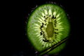 Backlit Kiwi Royalty Free Stock Photo