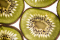 Backlit kiwi slices inside texture Royalty Free Stock Photography