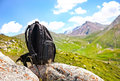 Backpack in mountains Royalty Free Stock Image