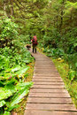 Backpacker on a boardwalk trail Stock Photo