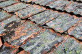 Backround from old terracota roof tiles made Stock Photography