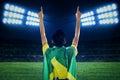 Backside of expressive brazilian fans Royalty Free Stock Photo